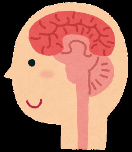 脳は自動生成