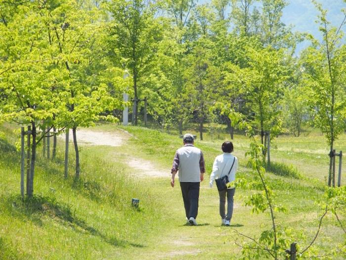 特別支給の老齢厚生年金